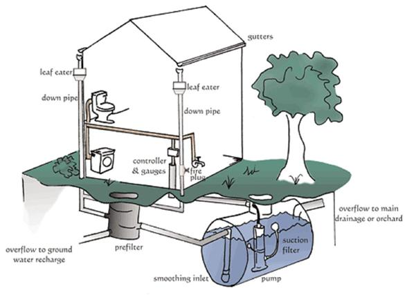 2 Guidelines on Rainwater Catchment Systems for Hawai'i Acknowledgments, publication data Published by the College of Tropical Agriculture and Human Resources (CTAHR) and